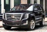 Cadillac Escalade Trending Miami Rental